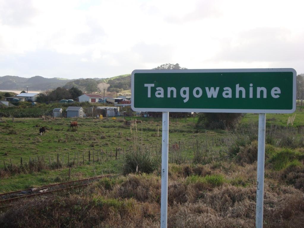 Tangowahine