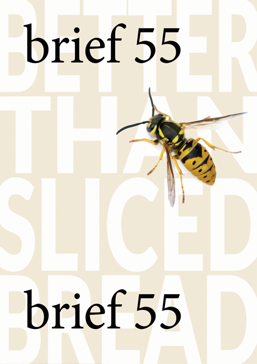 Brief 55 Cover