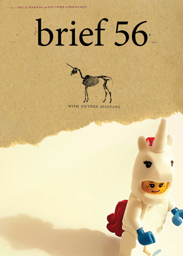 Brief issue 56 Cover by Matt Kelly, Photograph by Inês Pimentel