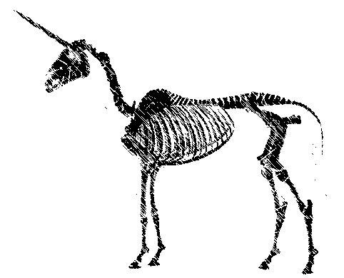 brief unicorn